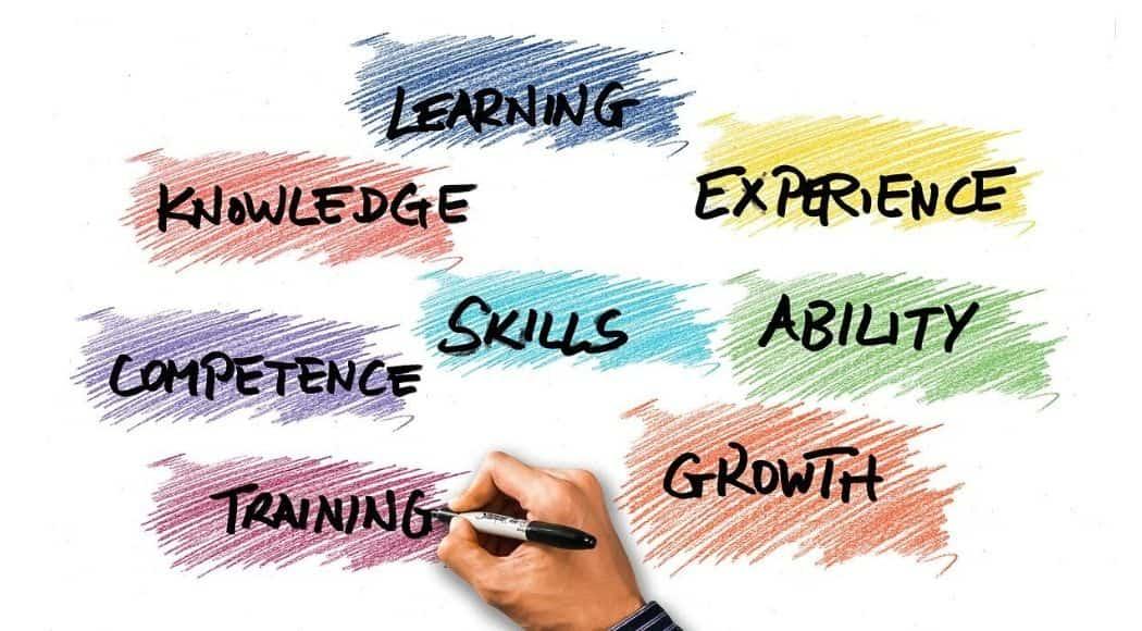 analisi delle skills