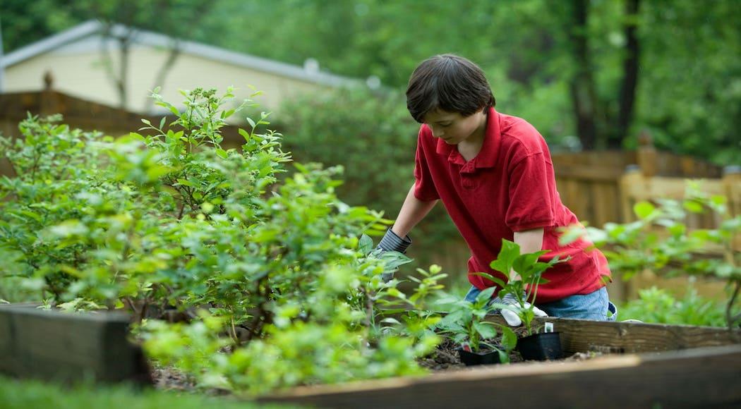 sviluppo-sostenibile-scuola