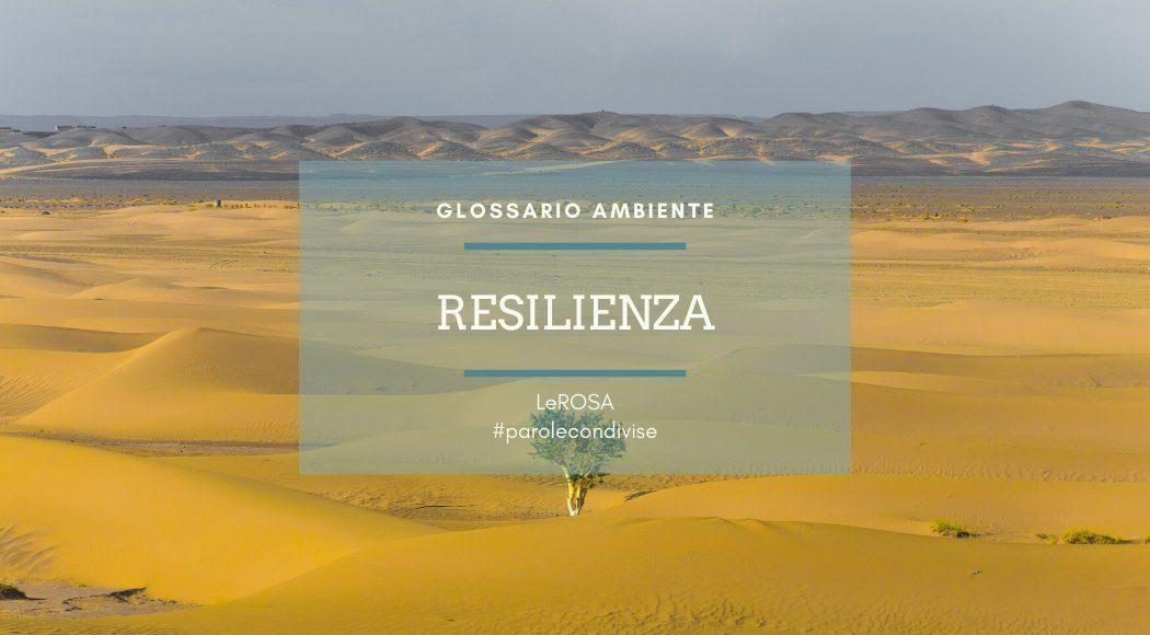 resilienza-glossario-ambiente