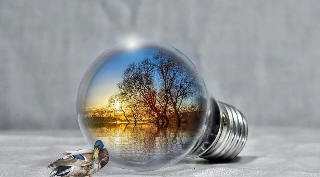 Energie rinnovabili quali sono