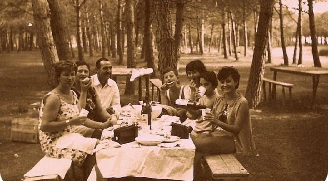 picnic perfetto in pineta al mare